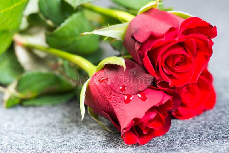 Rote Rosen auf einem Stoff stockbild