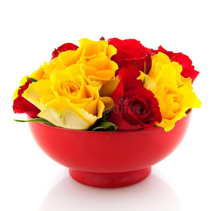 Rote Rosen in den gelben Eierbechern stockfoto