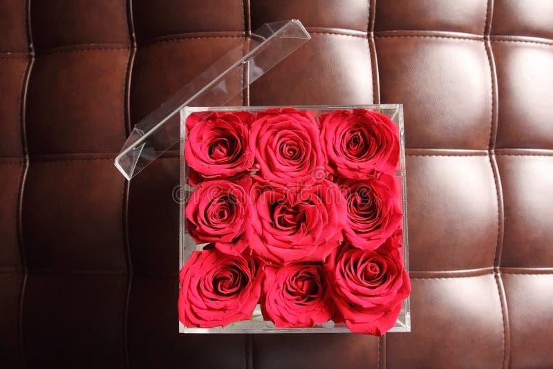 Rote Rosen in einem Glaswürfel auf einem ledernen Sofa lizenzfreie stockfotos