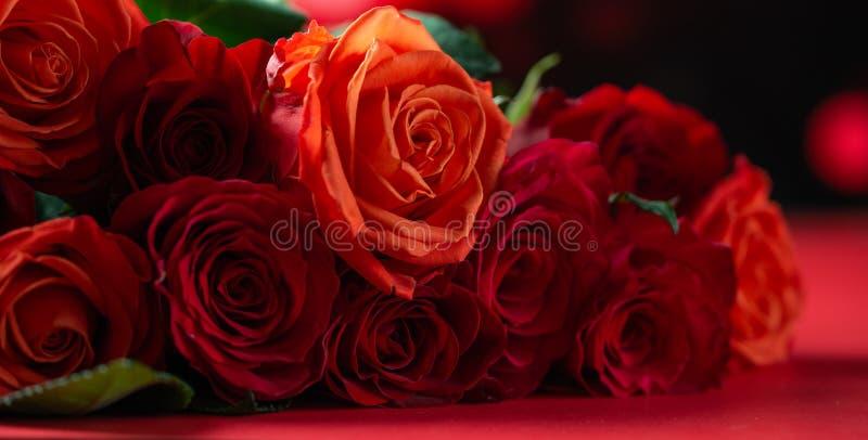 Rote Rosen mit rotem Hintergrund, Glückwünsche zum Valentinstag, zum Geburtstag oder zum Tag der Happy Love Romantik, Banner stockbild