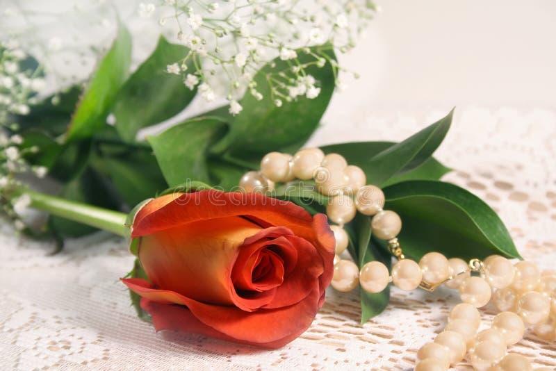 Rote Rosen-Perlen stockfotos