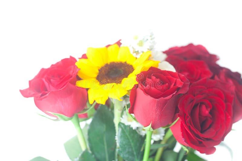 Rote Rosen und Sonnenblumen stockfoto