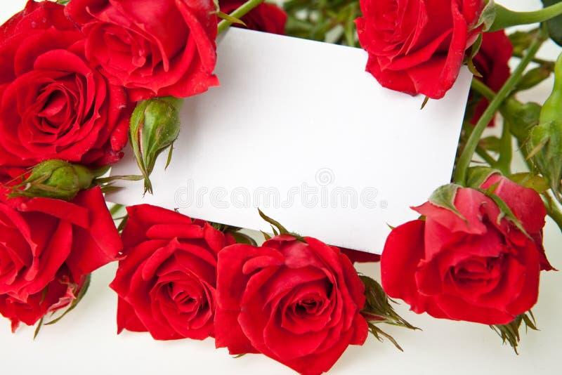 Rote Rosen und unbelegte Einladungskarte stockfoto