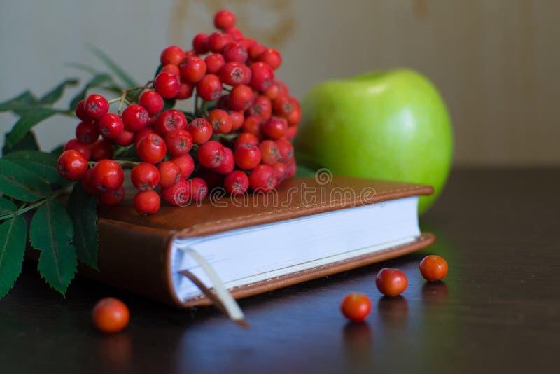 Rote Rowan auf einem geschlossenen Notebook stockfotos