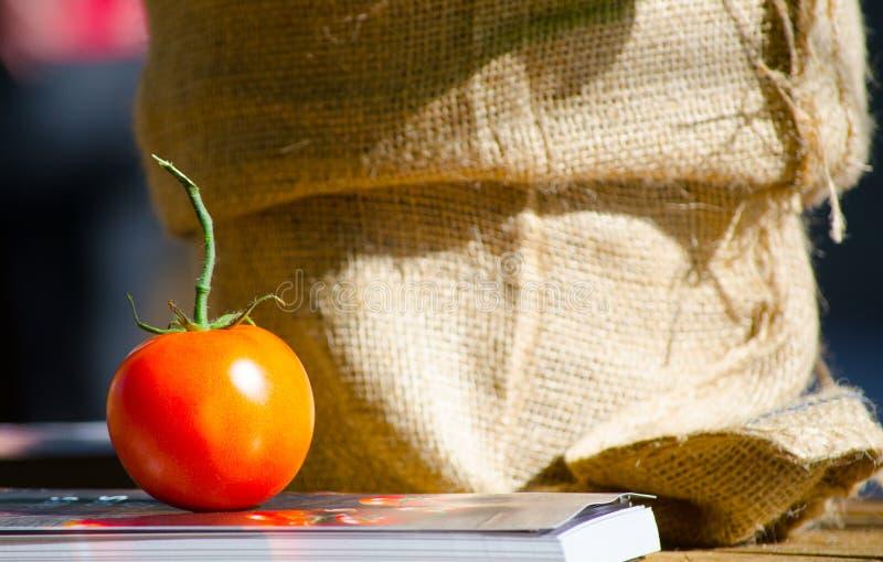 Rote runde einzelne Tomate, die auf ein Buch mit braunem Sack am Hintergrund sich setzt lizenzfreie stockfotos