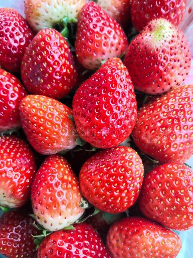 Rote süße Erdbeere stockbild