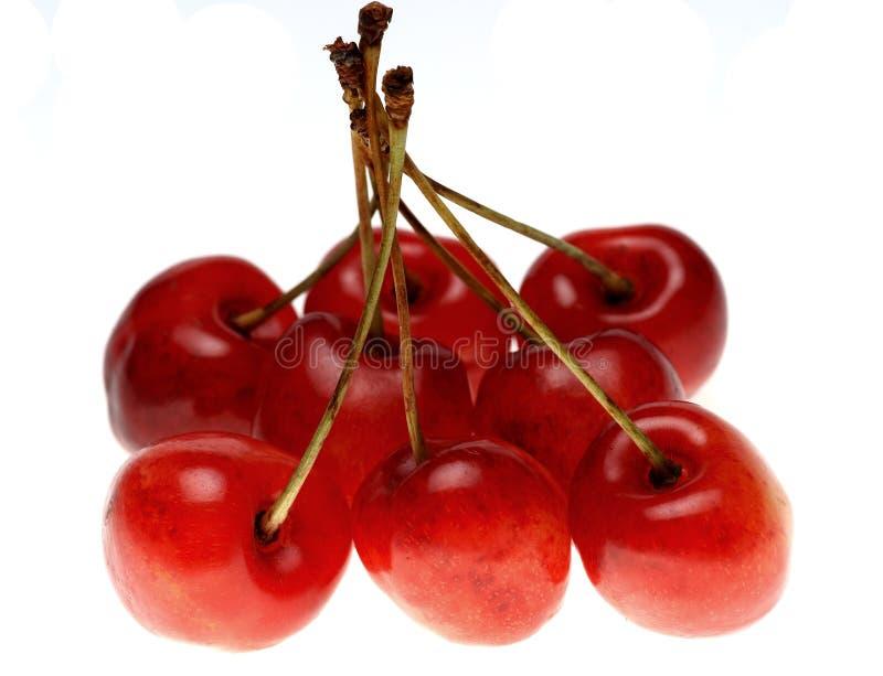 Rote süße Kirsche stockfotografie
