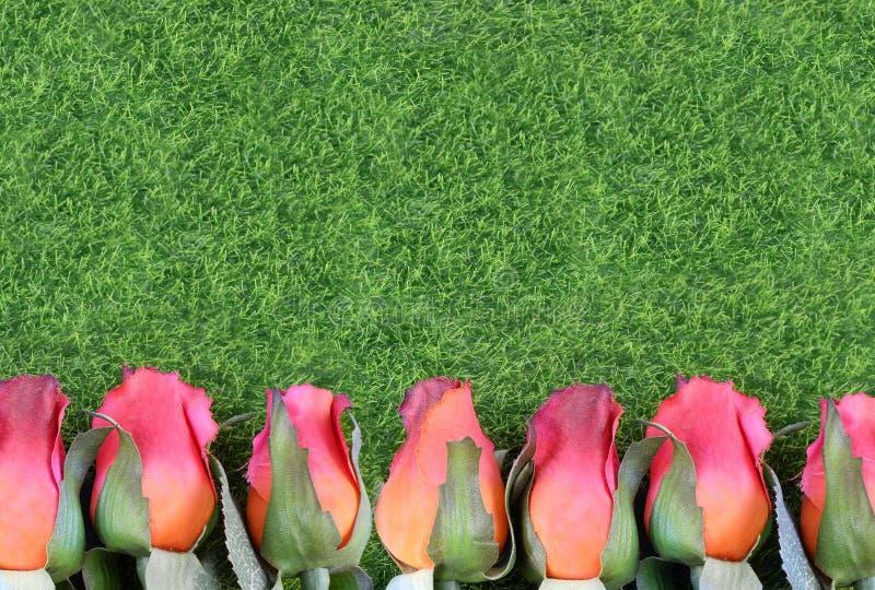 Rote Seidenrosen und künstliche Form des grünen Grases eine untere Grenze Gut für die Ausführung das vollblütige Rennen lizenzfreies stockbild