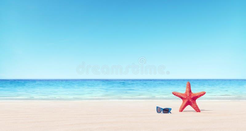 Rote Starfish und blaue Sonnenbrille auf dem Strandsommerhintergrund lizenzfreies stockfoto