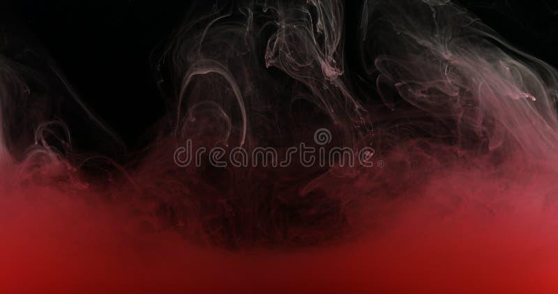 Rote Tinten-Farbe im Wasser, das flüssige künstlerische Formen schafft lizenzfreies stockbild