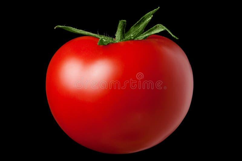 Rote Tomate auf einem schwarzen Hintergrund lizenzfreies stockfoto