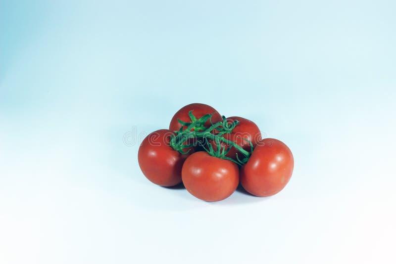 Rote Tomaten auf dem lokalisierten weißen Hintergrund stockfotografie