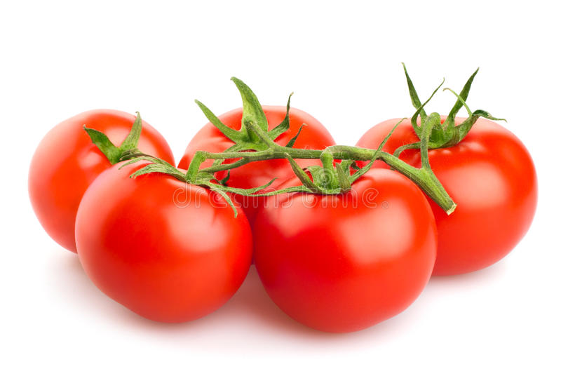 Rote Tomaten lokalisiert auf weißem Hintergrund stockfoto