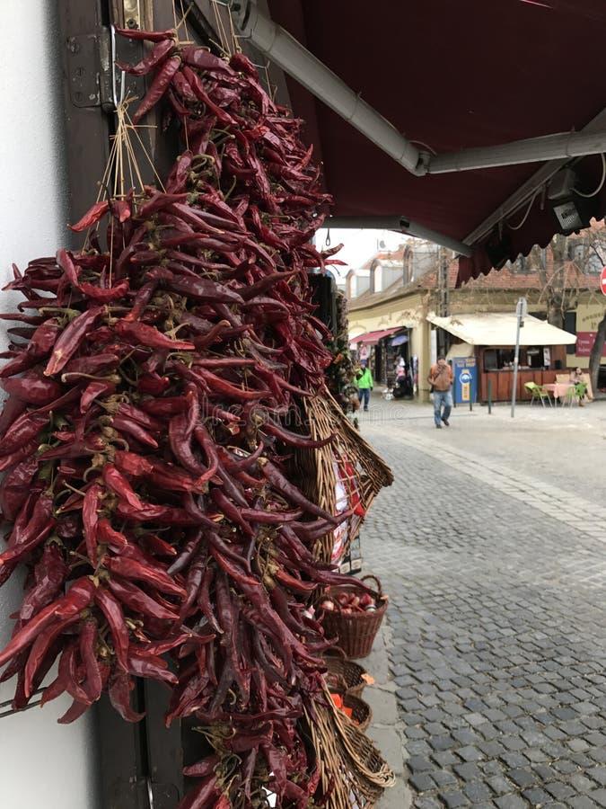 Rote trockene Paprika souvernirs in Szentendre, nahe Budapest, Ungarn lizenzfreie stockbilder