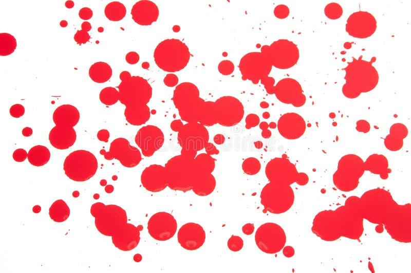 Rote Tropfen auf Weiß stockbilder