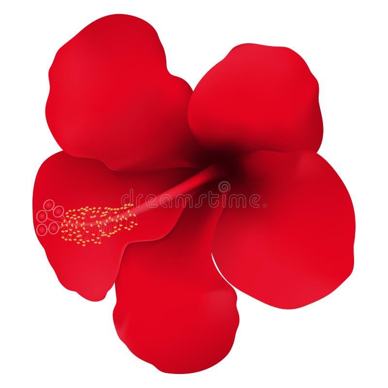 Rote tropische Blume Abstrakte vektorabbildung Realistische vektorabbildung Lokalisiert auf Wei? lizenzfreie abbildung