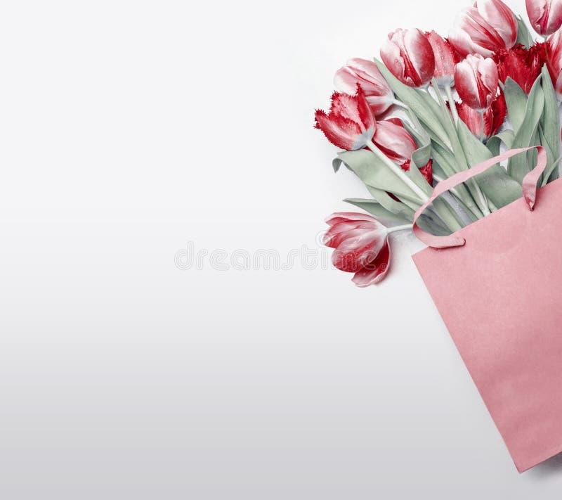 Rote Tulpen in der Papiereinkaufstasche auf hellgrauem Hintergrund Festliches Frühlingsblumenbündel Blumengeschenkverfassen frühj lizenzfreies stockfoto