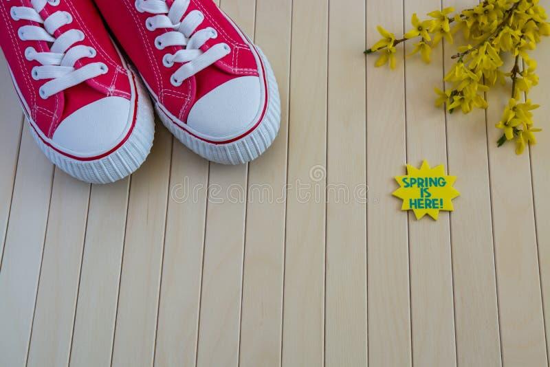 Rote Turnschuhe mit Frühlingszeichen und gelbe Blumen auf dem hölzernen b lizenzfreie stockfotos