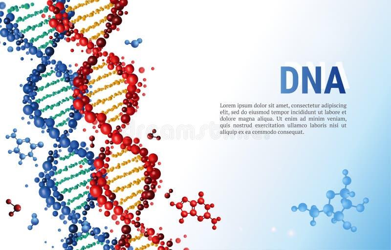 Rote und blaue DNA-Sequenz-Hintergrundschablone für Darstellung, Plakat, Netz Mädchenlesezeitschrift auf dem sandigen Strand stock abbildung