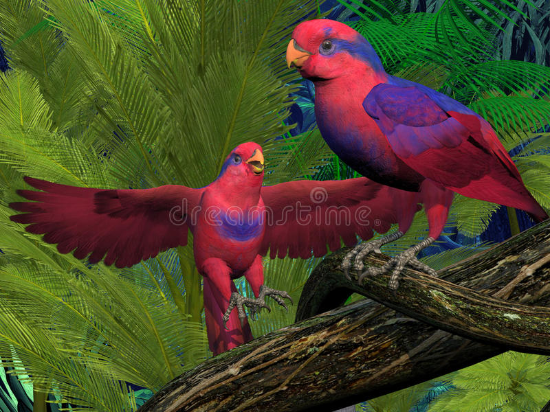 Rote und blaue Lory Parrots stock abbildung