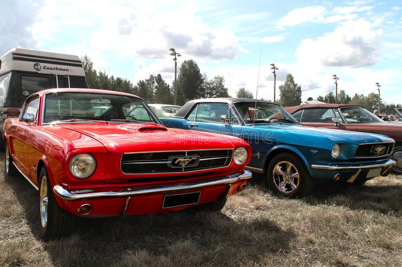 Rote und blaue Mustangs lizenzfreies stockbild