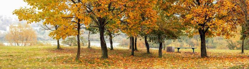 Rote und gelbe Bäume im Herbst durch den Fluss lizenzfreie stockfotografie