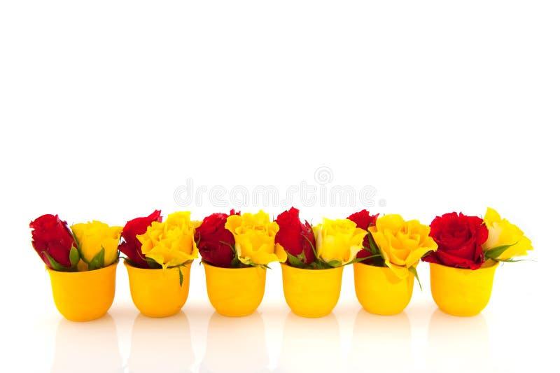 Rote und gelbe Rosen in den gelben Eierbechern stockfoto