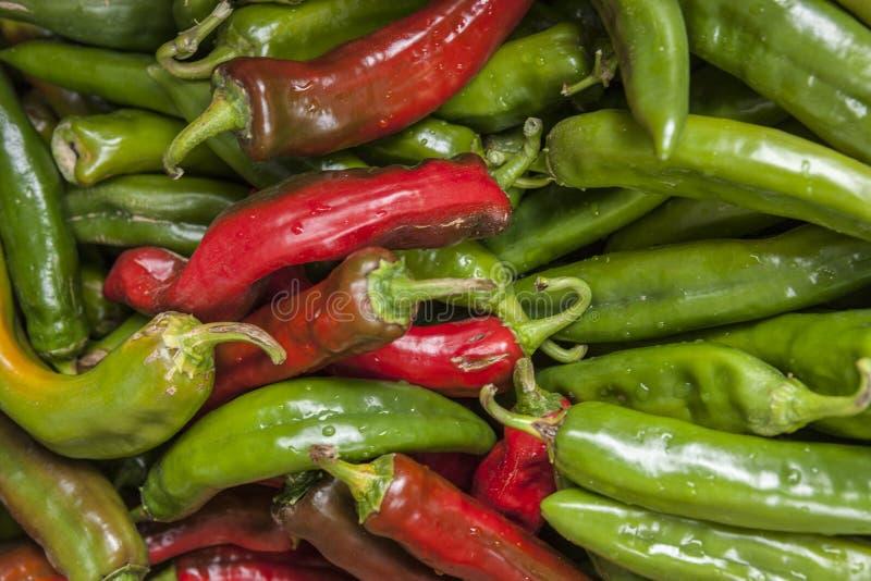 Rote und grüne Jalapeno-Pfeffer lizenzfreie stockfotos
