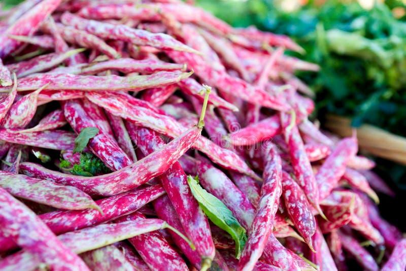 Rote und purpurrote Borlotti-Bohnen an einem Landwirt ` s Markt stockfotografie