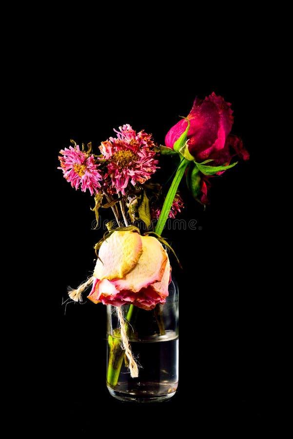 Rote und rosa Blumen Wither in der klaren Flasche auf schwarzem Hintergrund stockbild
