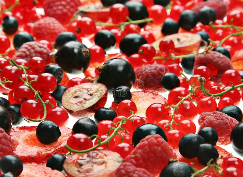 Rote und schwarze Beere lizenzfreies stockbild