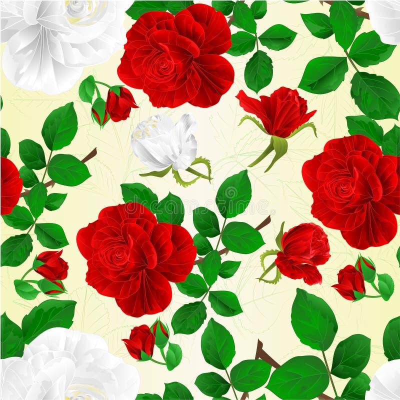 Rote und weiße Rosen der nahtlosen Beschaffenheit mit fetive Hintergrund der Knospen- und Blattweinlese vector die editable Illus stock abbildung