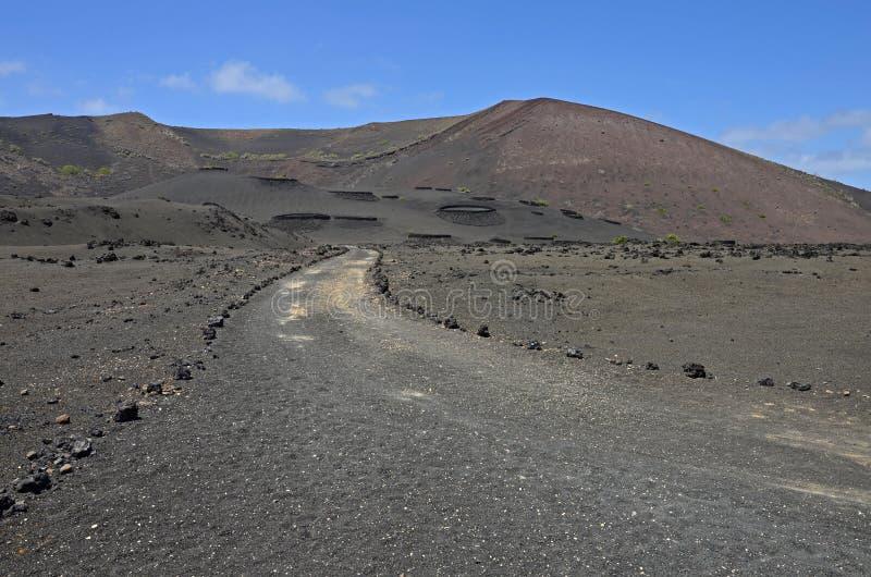Rote vulkanische Kegel in Nationalpark Timanfaya lizenzfreie stockfotos