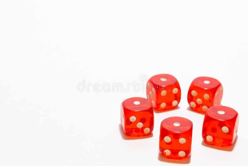 Rote Würfel, typisches Spielen Mit weißem Hintergrund- und Kopienraum stockbild