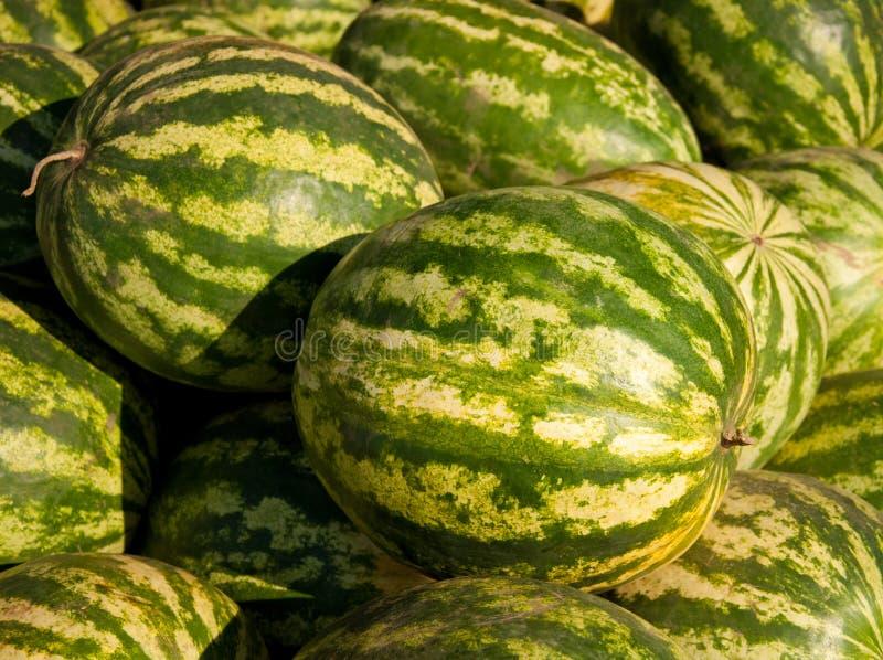 Rote Wassermelonen stockfoto