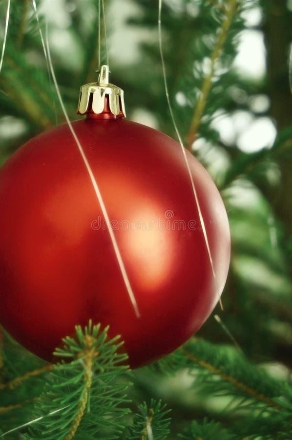 Rote Weihnachtsbaumkugel Lizenzfreie Stockbilder