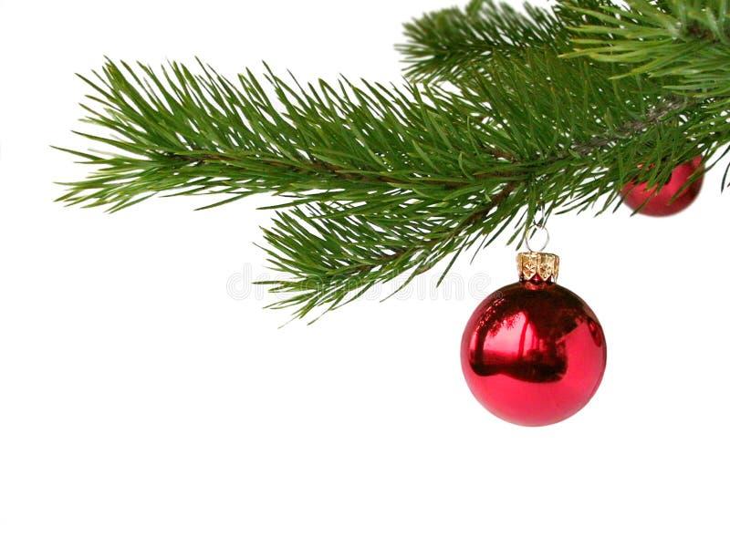 Rote weihnachtskugeln stockfoto bild von feiertag kiefer for Weihnachtskugeln bilder