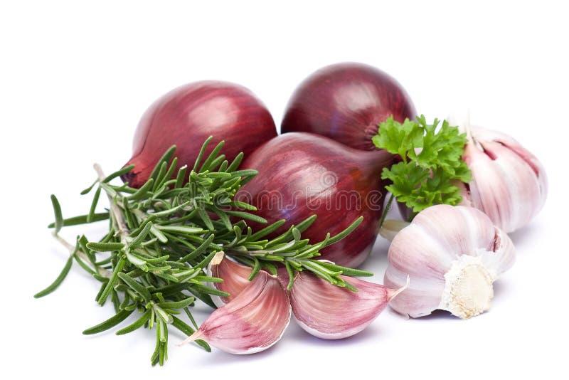 Rote Zwiebel, Knoblauch und frischer Rosmarin stockfoto