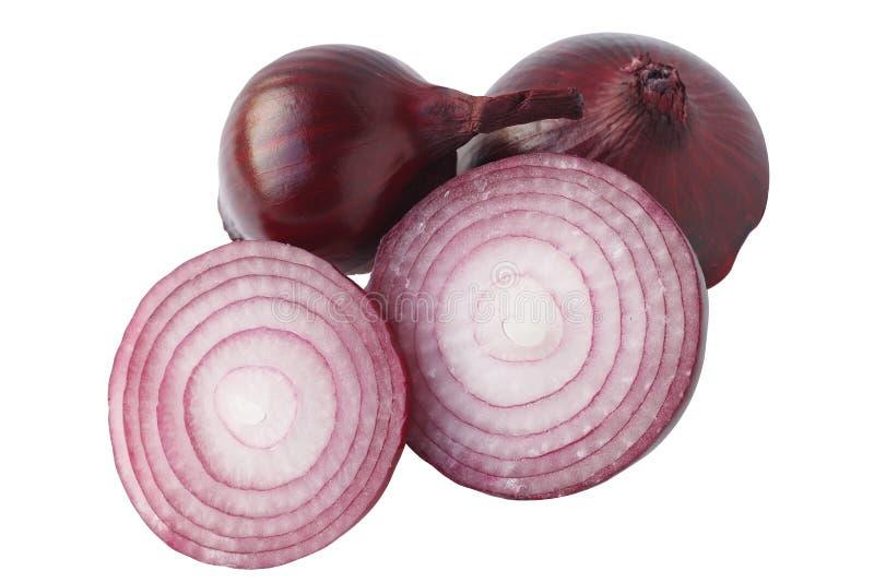 Rote Zwiebel vorbei auf weißem Hintergrund stockfotos