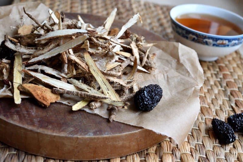 Roteiro chinês da medicina tradicional Vista lateral fotografia de stock