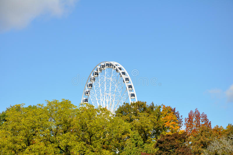 Rotella di Ferris enorme che torreggia sopra gli alberi. immagini stock libere da diritti