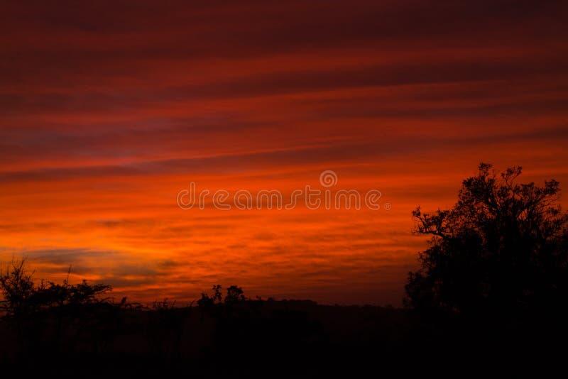 Roter afrikanischer Sonnenaufgang stockbild