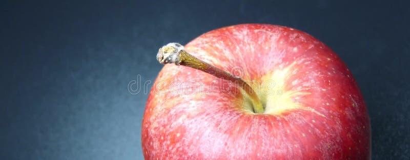 Download Roter Apfel stockfoto. Bild von studio, vitamine, vitamin - 12202864