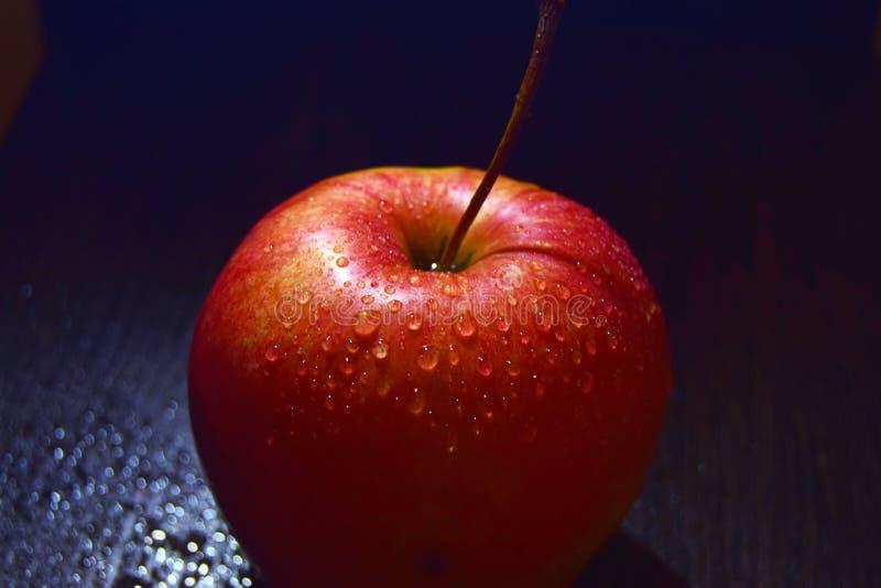 Roter Apfel auf schwarzem Hintergrundabschluß oben lizenzfreies stockbild