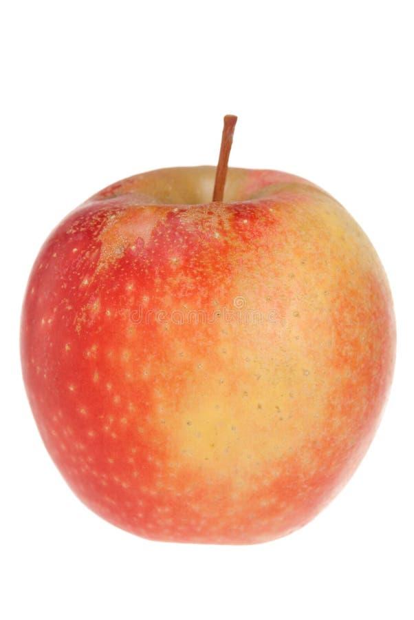 Roter Apfel auf Weiß lizenzfreies stockfoto