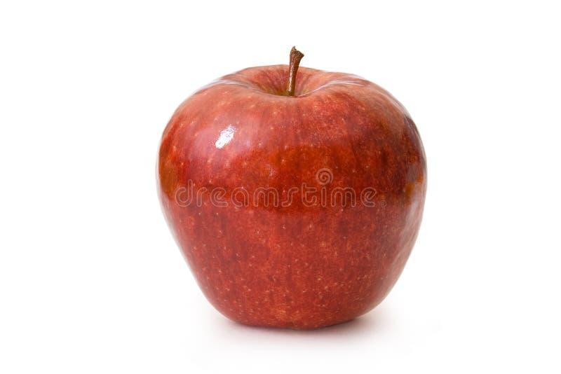 Roter Apfel auf Weiß stockfotos