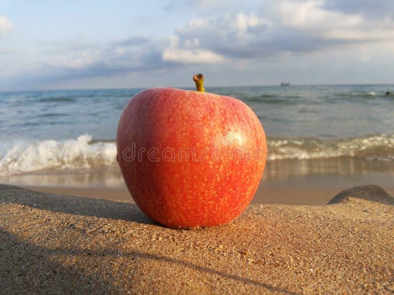Roter Apfel auf Yellow- Seasand lizenzfreies stockbild