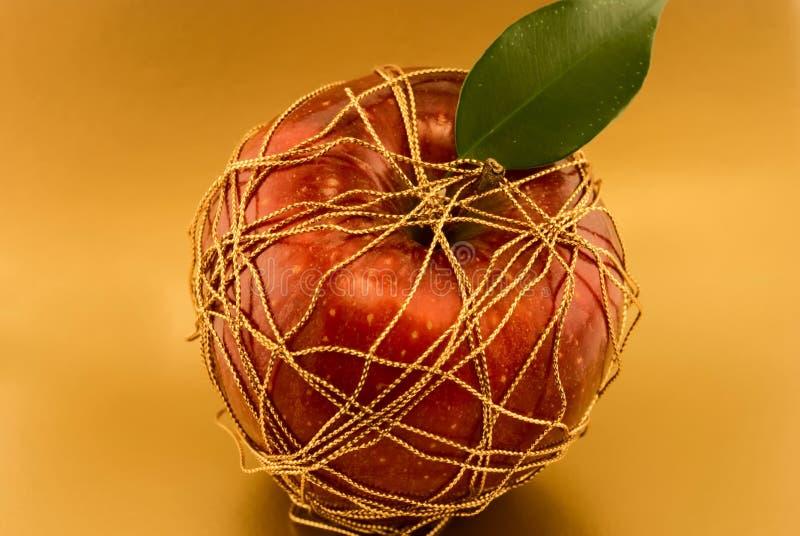 roter Apfel, eingewickeltes Goldgewinde lizenzfreies stockbild