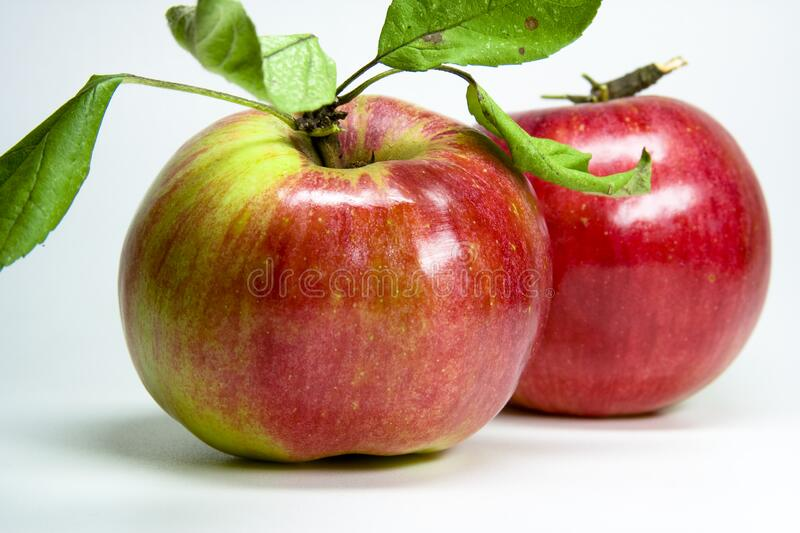 Red appel royalty free stock photography