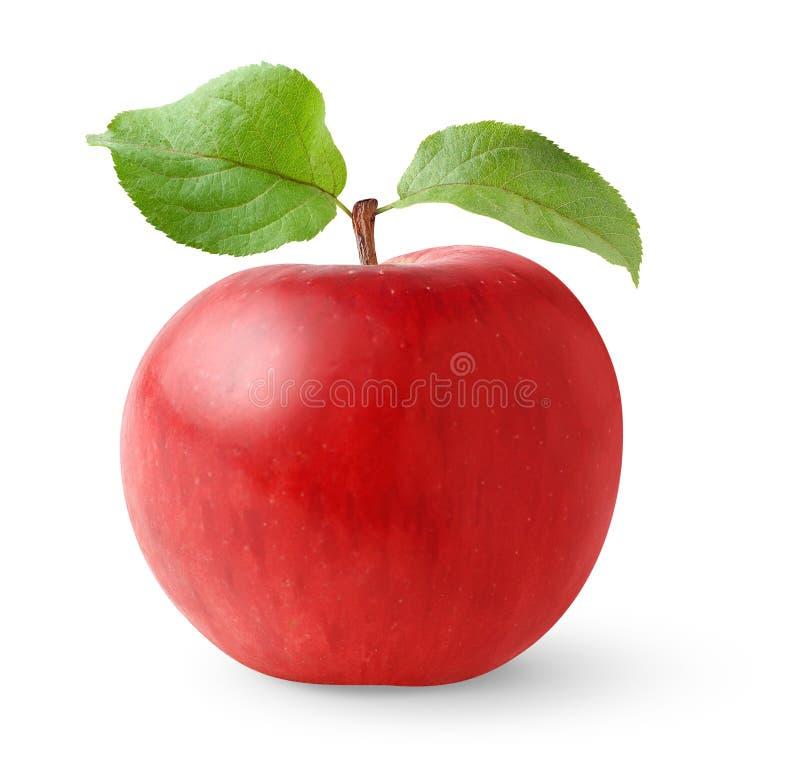 Roter Apfel mit Blättern lizenzfreies stockfoto